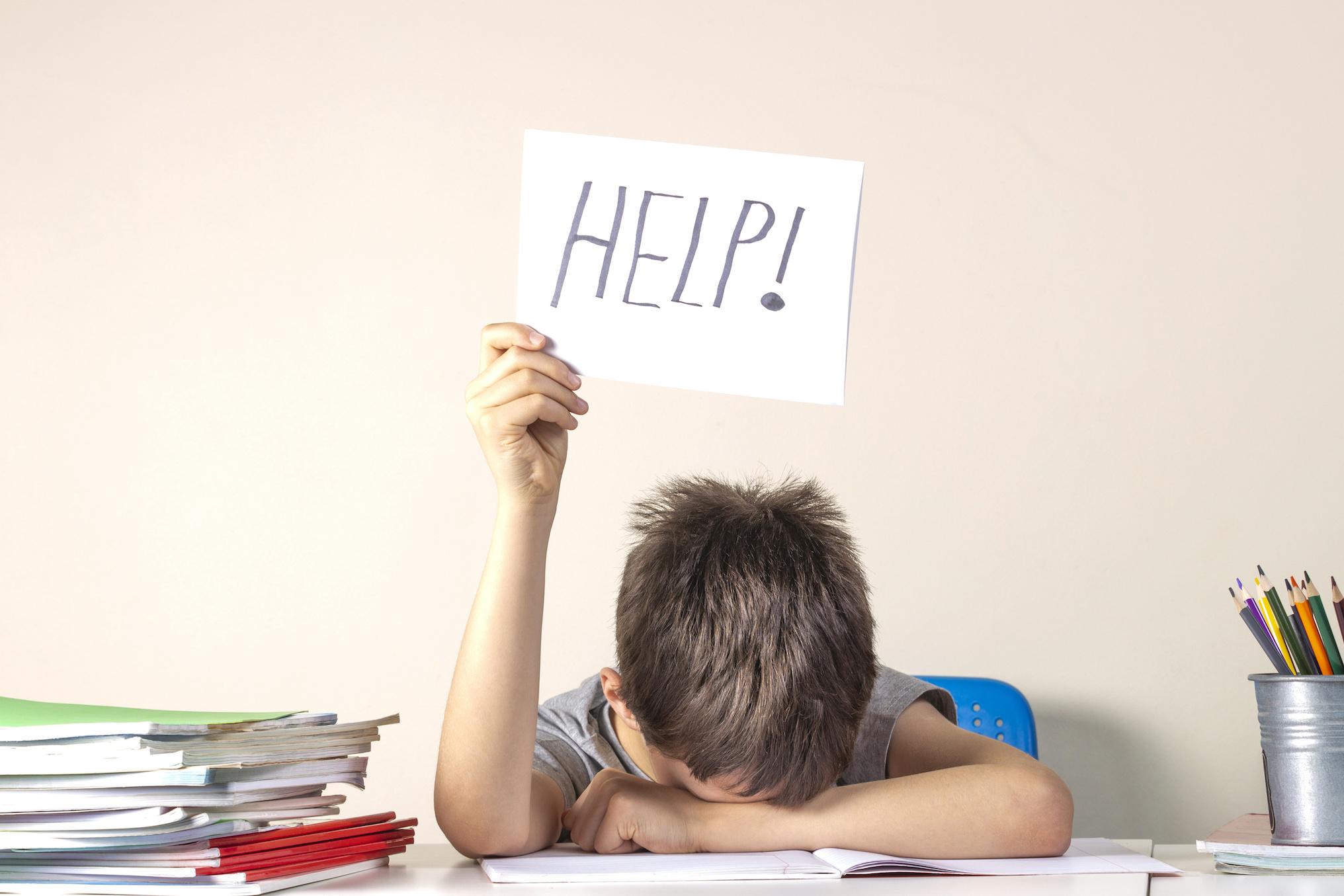 Où trouver des cours de soutien scolaire? - Capital Koala