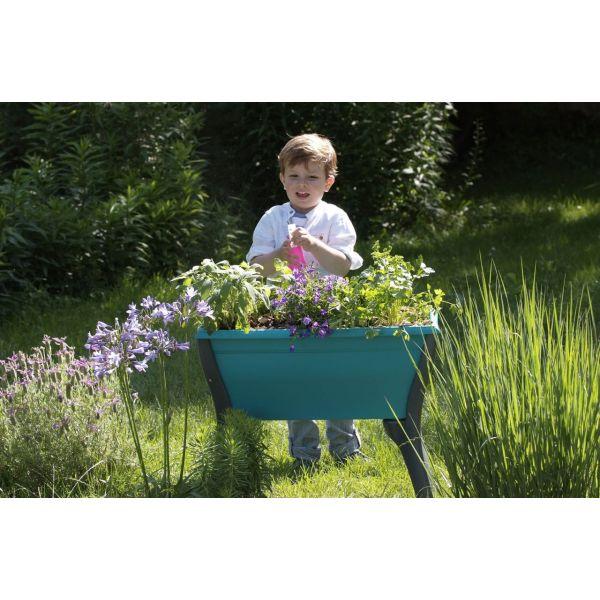 plantation et potager avec les enfants conseils et astuces pour jardiner capital koala. Black Bedroom Furniture Sets. Home Design Ideas
