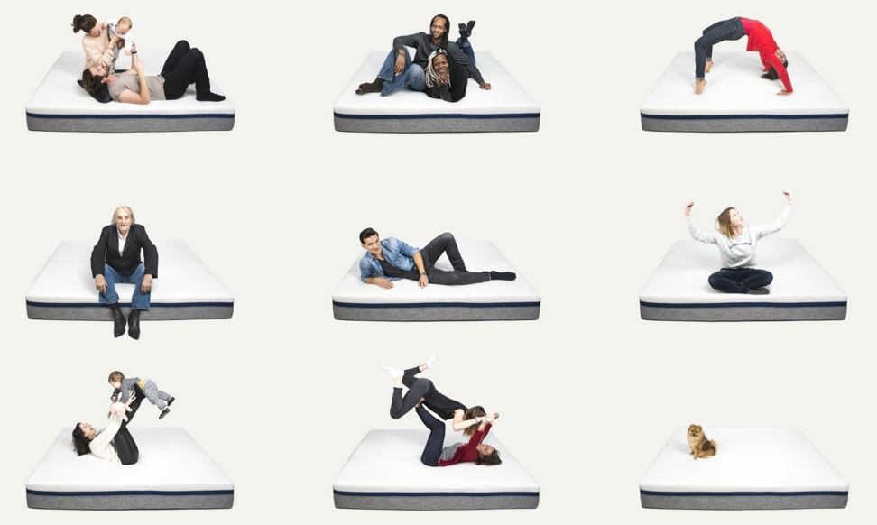vos nuits ne seront plus jamais les m mes capital koala. Black Bedroom Furniture Sets. Home Design Ideas